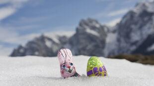 A górale na święta zwiastują... wiosnę! Ma być ciepło i słonecznie