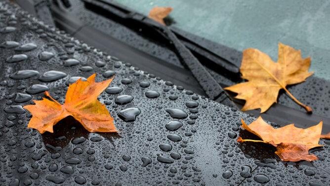 Pogoda drogowa na dziś: aura nie wszędzie będzie łaskawa