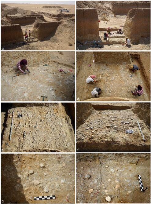 Archeolodzy w trakcie pracy na pustyni (2021 Masojć et al./Uniwersytet Wrocławski)