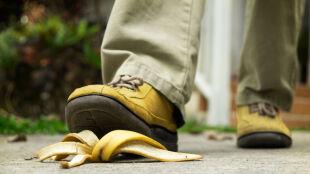 Skórka od banana, opatrunek z surowego mięsa i człowiek przebrany za niedźwiedzia. Ig Noble rozdane
