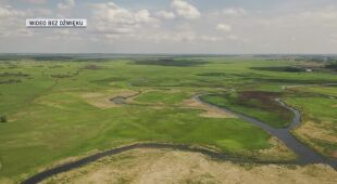 Widok z drona na Biebrzański Park Narodowy w czerwcu 2020 roku