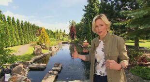 Z szumem wody w tle (odc. 681/ HGTV odc. 19 seria 2018)